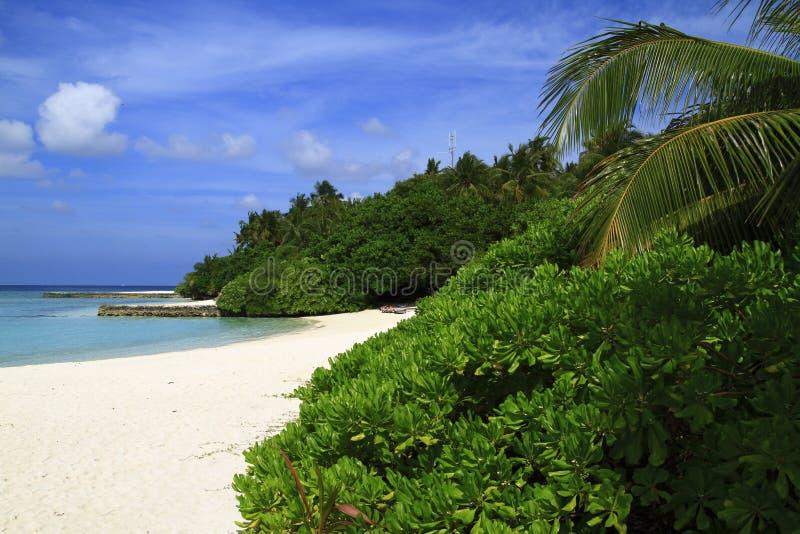 Download Tropikalna plaża obraz stock. Obraz złożonej z zaciszność - 32902039