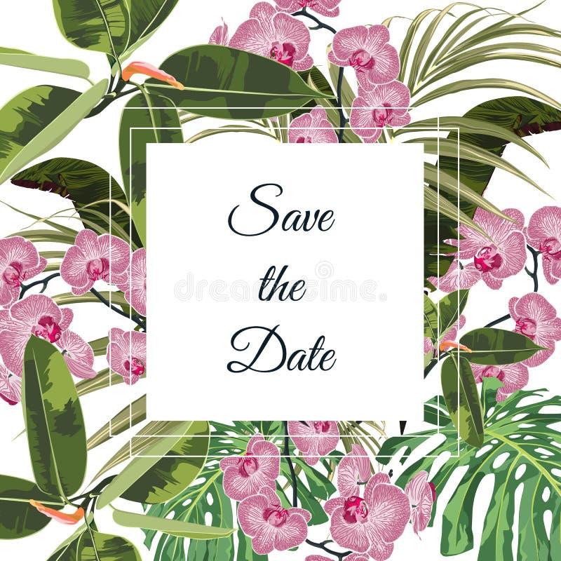 Tropikalna różowa orchidea kwitnie bukieta eleganckiego karcianego szablon Kwiecisty plakat, zaprasza ilustracji