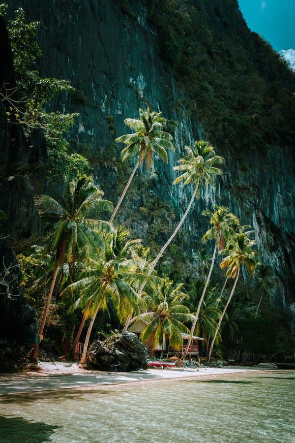 Tropikalna raj plaża otaczająca ogromnymi majestatycznymi górami kołysa, Filipiny, Azja Południowo-Wschodnia zdjęcia royalty free