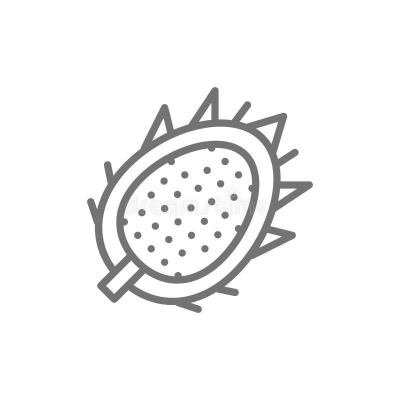 Tropikalna smok owoc, pitahaya, pitaya kreskowa ikona ilustracja wektor