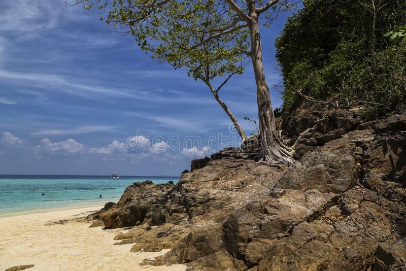 tropikalna wyspa Tajlandia obrazy royalty free