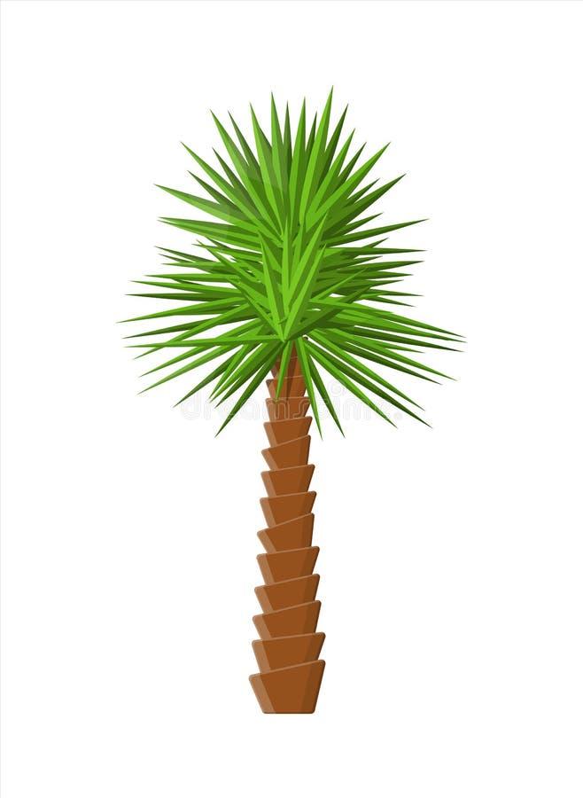 Tropikalna zielona palma Dżungla liście ilustracja wektor