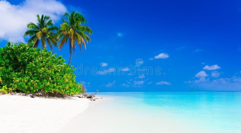 tropikalne morza obraz stock