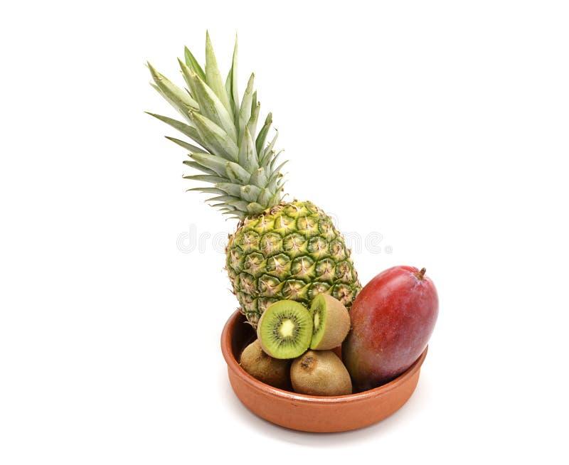 Tropikalne owoc obrazy stock
