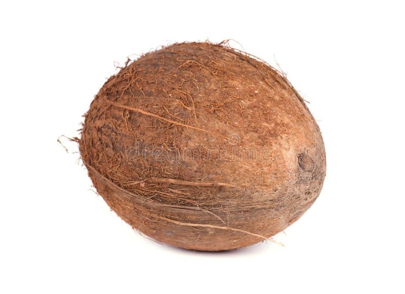 Tropikalne owoc, koks, odizolowywający na białym tle z ścinek ścieżką, obrazy stock