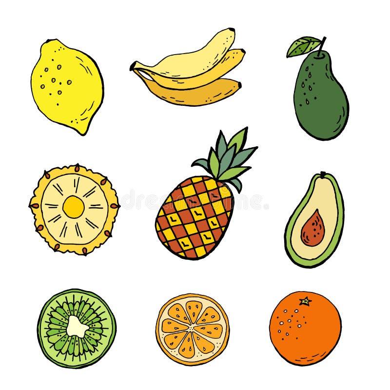 Tropikalne owoc Ustawia? ilustracji