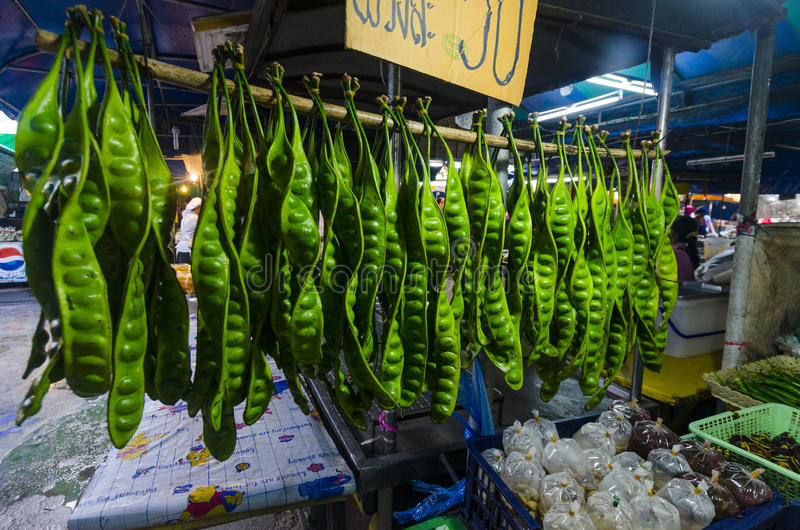 Tropikalne owoc w pakunkach fotografia royalty free