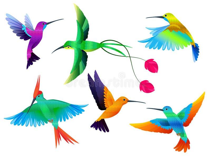 tropikalne ptaków Hummingbirds pieprzojad barwił papuzią egzotyczną ptaka zoo kreskówki wektoru kolekcję ilustracji