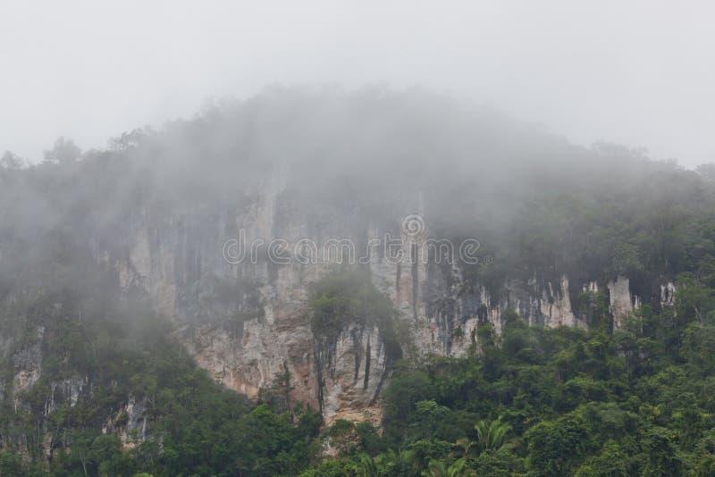 Tropikalne wapień falezy z mgłą zdjęcia stock