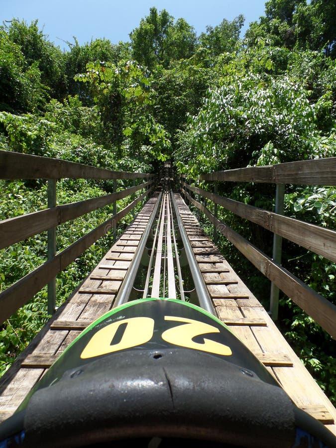Tropikalnego lasu deszczowego Bobsled przy Tajemniczym Halnym Jamajka zdjęcia royalty free
