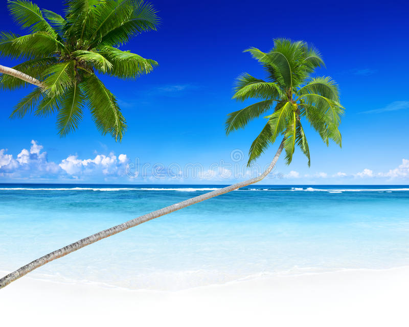 Tropikalnego raju wakacje Relaksujący pojęcie fotografia royalty free