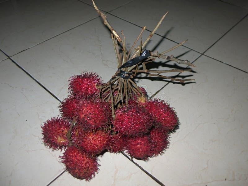 Tropikalnej owoc cukierki i świeży smak, szeroko rozprzestrzeniamy i r w Azja Źródło witaminy i zdrowie obrazy stock
