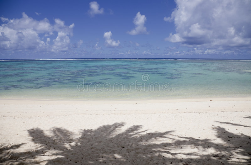 Download Tropikalni Cieni Plażowi Palmowi Drzewa Obrazy Stock - Obraz: 9247004
