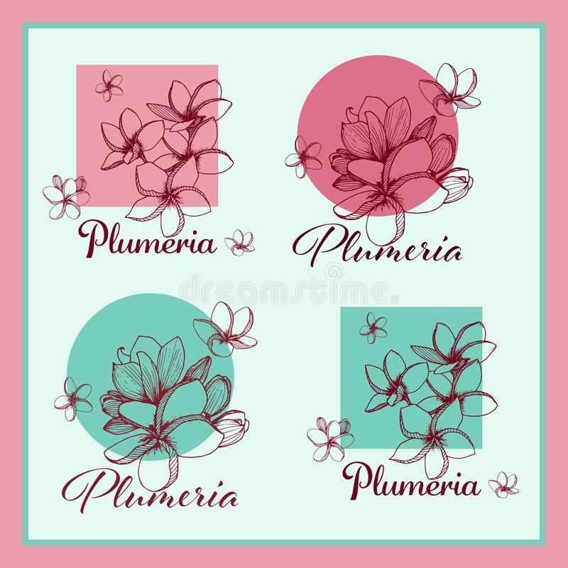 tropikalni egzotyczni kwiaty Plumeria kolekcja royalty ilustracja