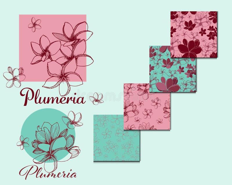tropikalni egzotyczni kwiaty Plumeria kolekcja ilustracja wektor