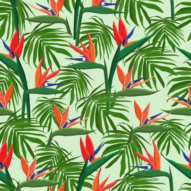 tropikalni egzotyczni kwiaty strelizia kolekcja royalty ilustracja