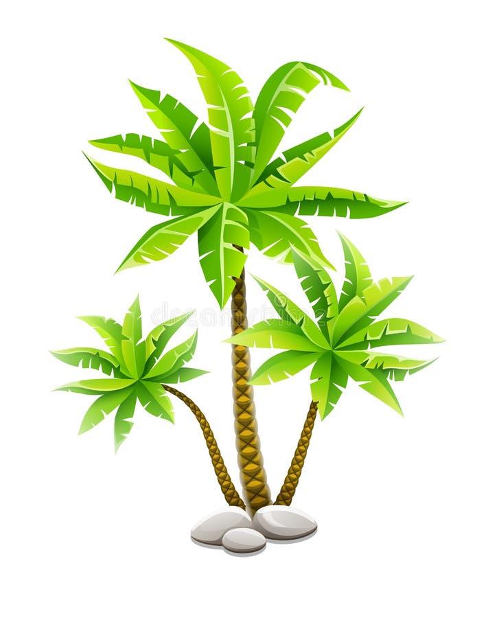 Tropikalni kokosowi drzewka palmowe z zielonymi liśćmi ilustracji