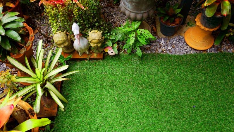 Tropikalni kwiaty i rośliny w małym ogródzie Tło dla teksta fotografia stock