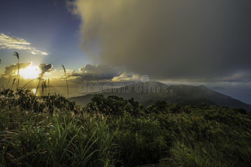 Tropikalni lasy deszczowi Wietnam zdjęcia royalty free