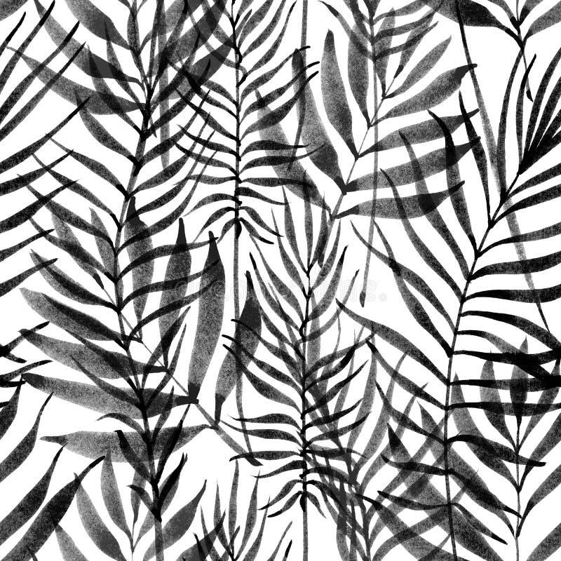 Tropikalni liście, dżungla wzór Bezszwowego atramentu muśnięcia botaniczny wzór Akwarela monochromu tło Palmowi liście ilustracji