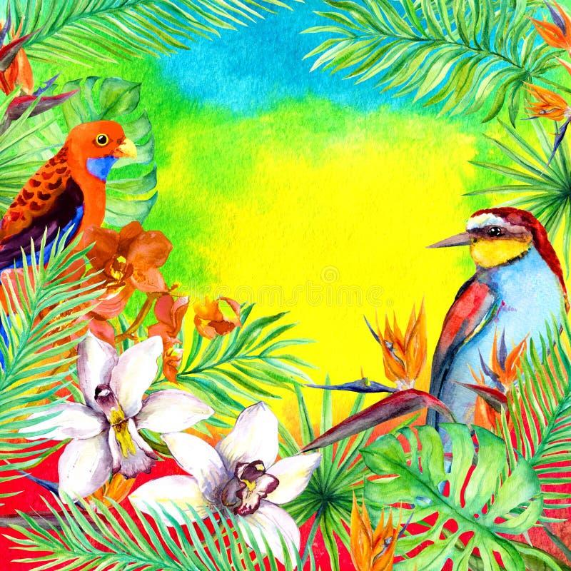 Tropikalni liście, egzotyczni ptaki, storczykowy kwiat Akwareli karta royalty ilustracja