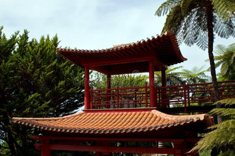 Tropikalni ogródy w Monte pałac fotografia stock