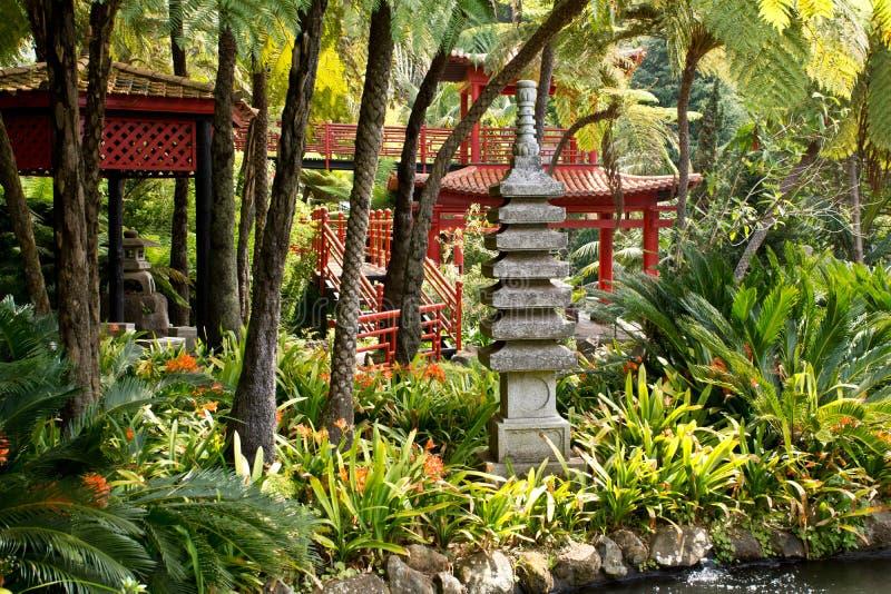 Tropikalni ogródy w Monte pałac zdjęcia stock