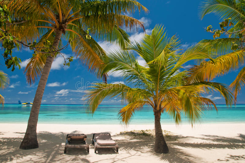 tropikalni plażowi sunbeds obraz stock