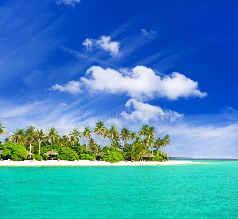 Download Tropikalni Plażowi Drzewka Palmowe Zdjęcie Stock - Obraz: 22903454