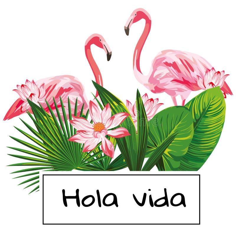 Tropikalni wektorowi składu hola vida sloganu menchii flaminga kwiaty opuszczają białego tło royalty ilustracja