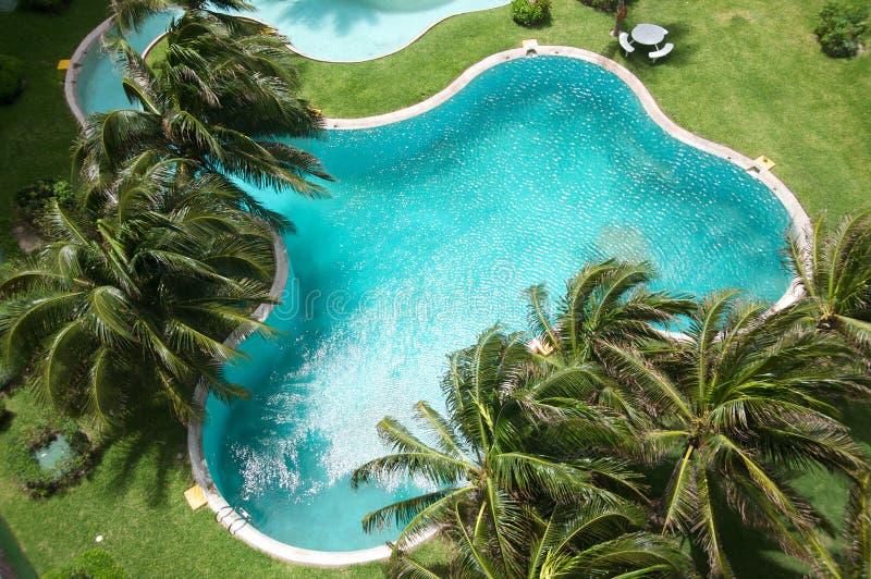 tropikalny basenu dopłynięcie obrazy stock