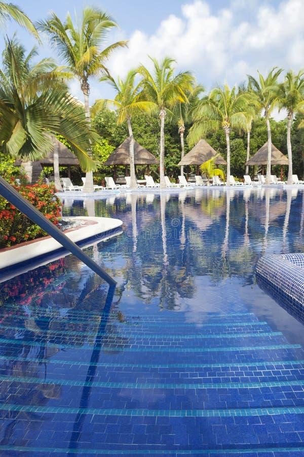tropikalny basenu piękny dopłynięcie zdjęcia stock