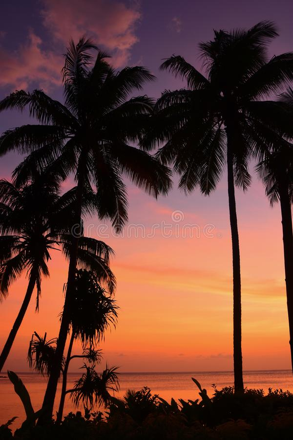 Tropikalny Beqa wyspy Fiji zmierzch zdjęcia stock