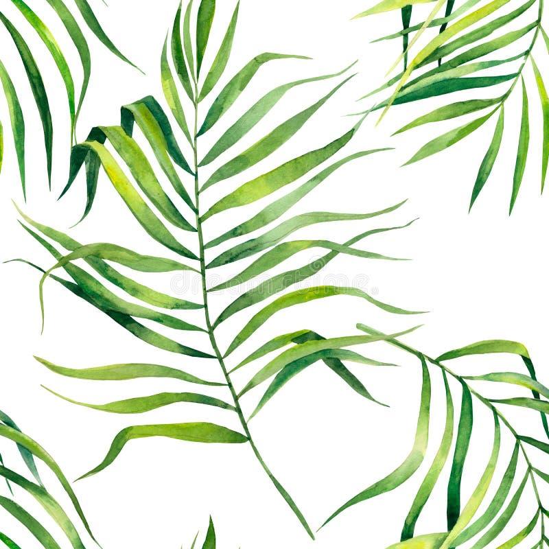 Tropikalny bezszwowy wz?r z egzotycznymi palmowymi li??mi Tropikalna d?ungli ulistnienia ilustracja egzotyczne ro?liny Lato pla?y royalty ilustracja