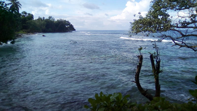 Tropikalny Brzegowy widok obraz royalty free