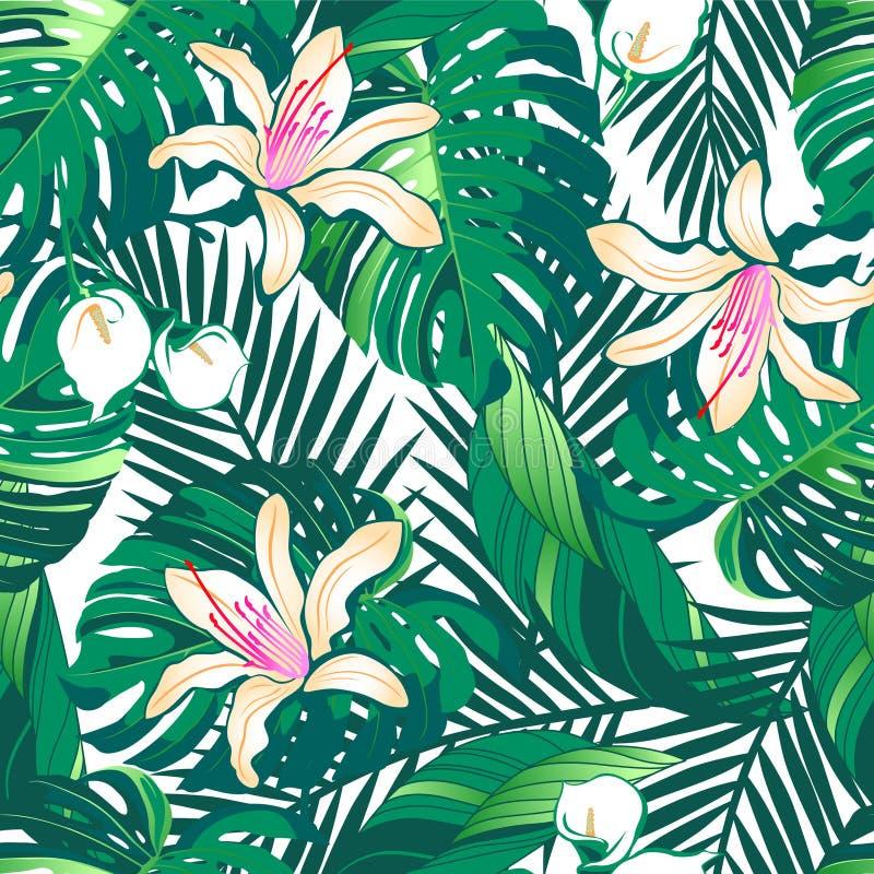 Tropikalny bujny kwitnie bezszwowego wzór na białym tle ilustracja wektor