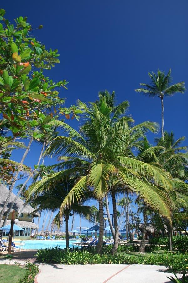 tropikalny Caribbean kurort obraz stock