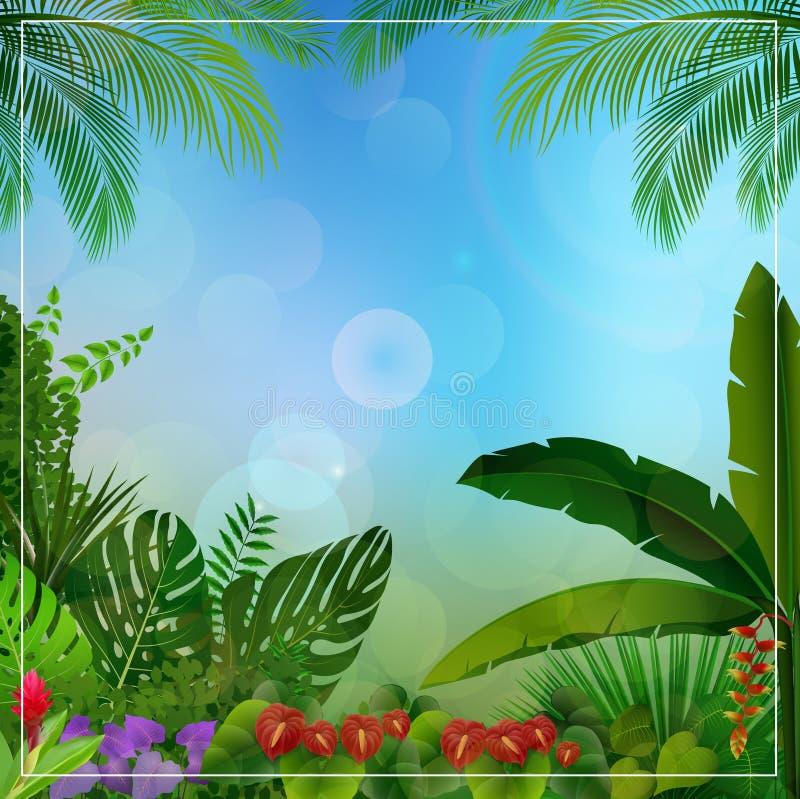 Tropikalny dżungli tło z drzewkami palmowymi i liśćmi ilustracji
