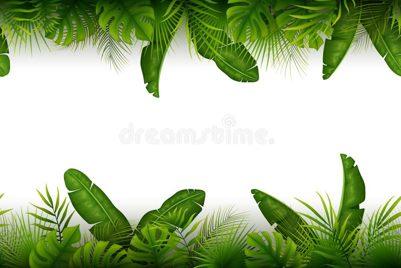 Tropikalny dżungli tło z drzewkami palmowymi i liśćmi na białym tle ilustracji