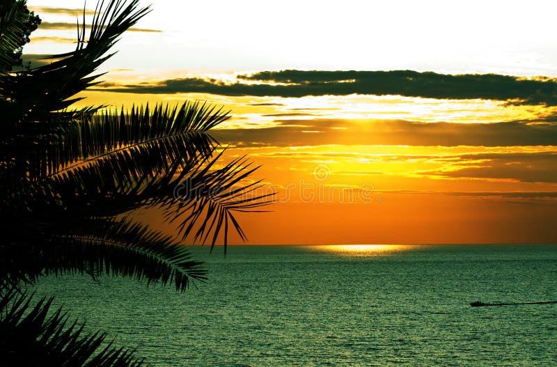 tropikalny denny beautifull zmierzch obraz stock