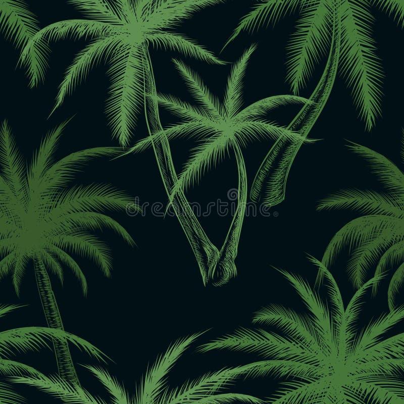 Tropikalny drzewko palmowe liścia wzór ilustracja wektor