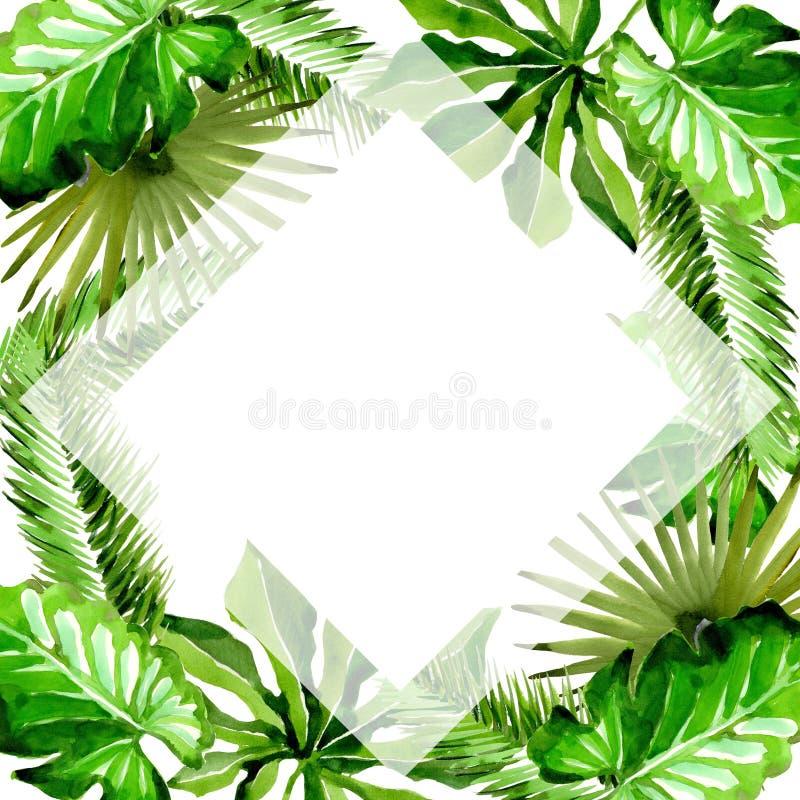 Tropikalny Hawaje opuszcza drzewko palmowe ramę w akwarela stylu ilustracja wektor