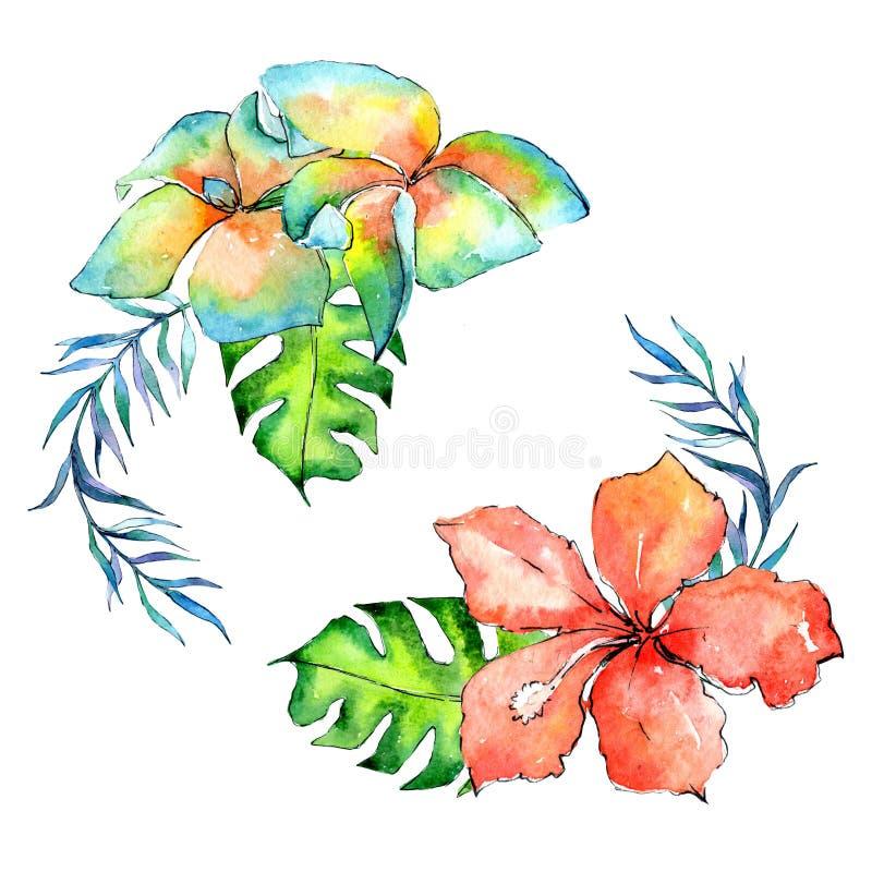 Tropikalny Hawaje opuszcza drzewko palmowe wianek w akwarela stylu royalty ilustracja