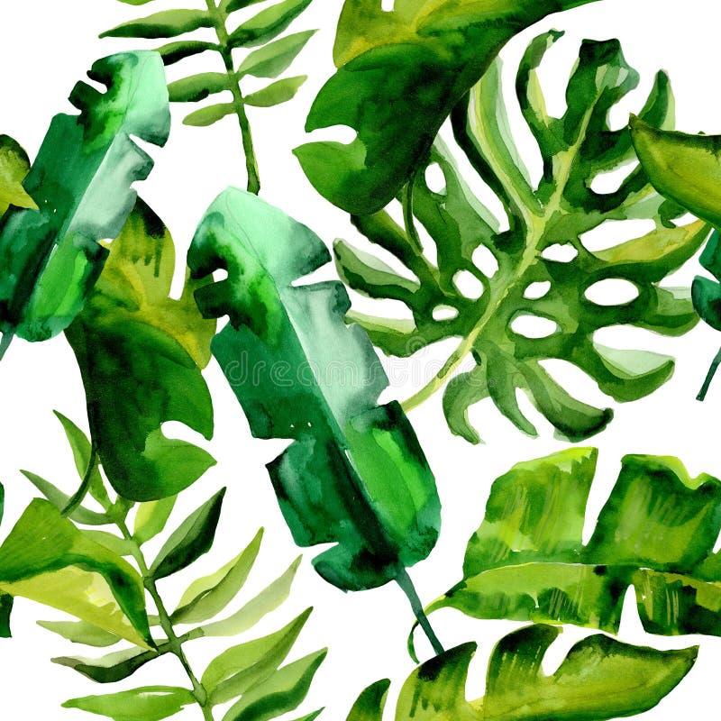 Tropikalny Hawaje opuszcza drzewko palmowe wzór w akwarela stylu ilustracji
