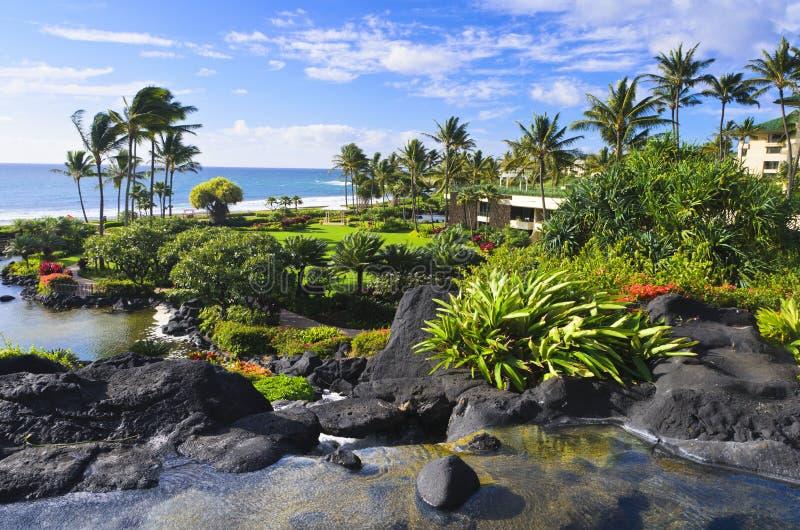 tropikalny Kauai ogrodowy kurort obraz royalty free