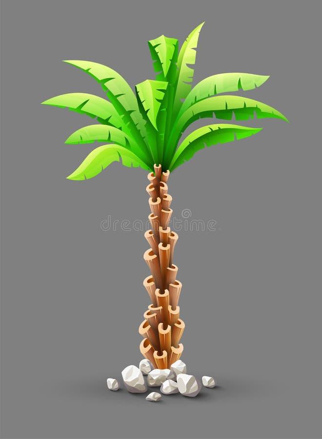 Tropikalny kokosowy drzewko palmowe z zielonymi liśćmi ilustracja wektor