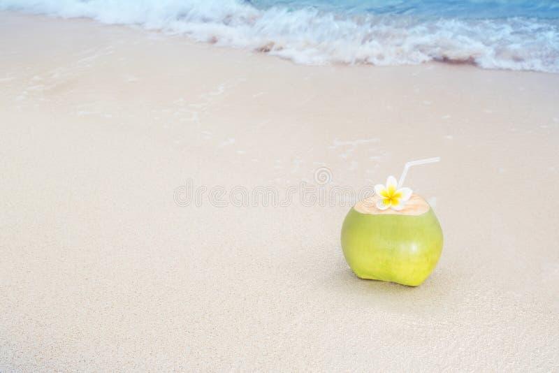 Tropikalny Kokosowy orzeźwienie zdjęcia stock