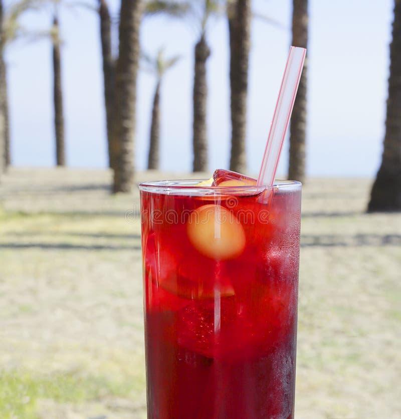 Tropikalny koktajlu napój na plaży z drzewka palmowego tłem, ostrość na napoju fotografia stock