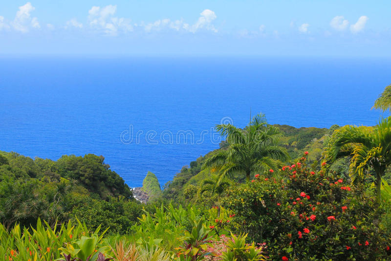 tropikalny krajobrazu obrazy stock