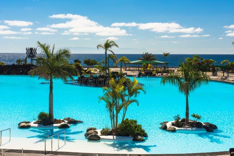Tropikalny kurortu basen z holów krzesłami, drzewkami palmowymi i widok na ocean, obraz royalty free